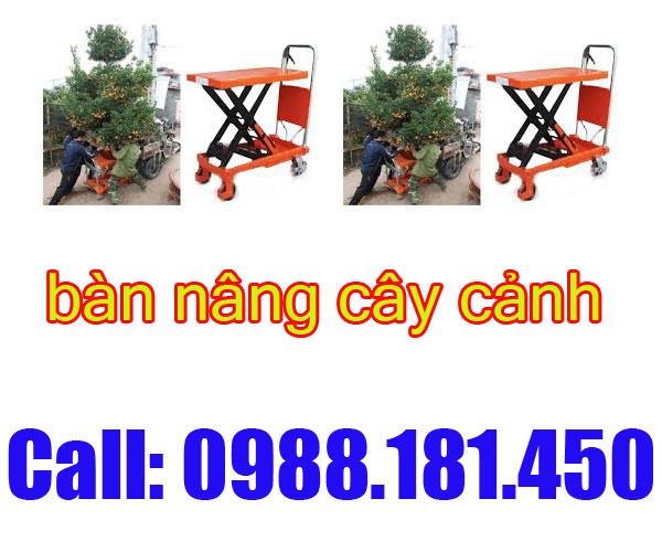 ban-nang-thuy-luc-750kg-1